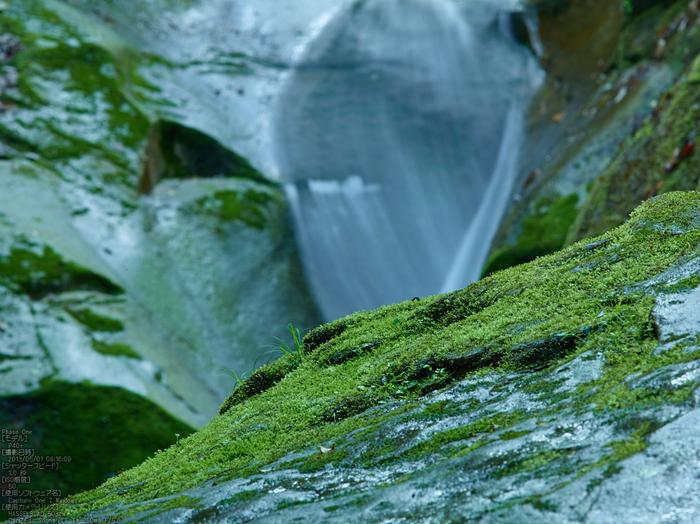 龍鎮の滝の新緑_2013yaotomi_10s.jpg