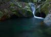 龍鎮の滝の新緑_2013yaotomi_1f.jpg