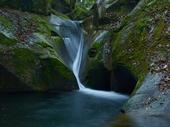 龍鎮の滝の新緑_2013yaotomi_5s.jpg