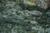 天の真名井の6月_2013yaotomi_8f.jpg