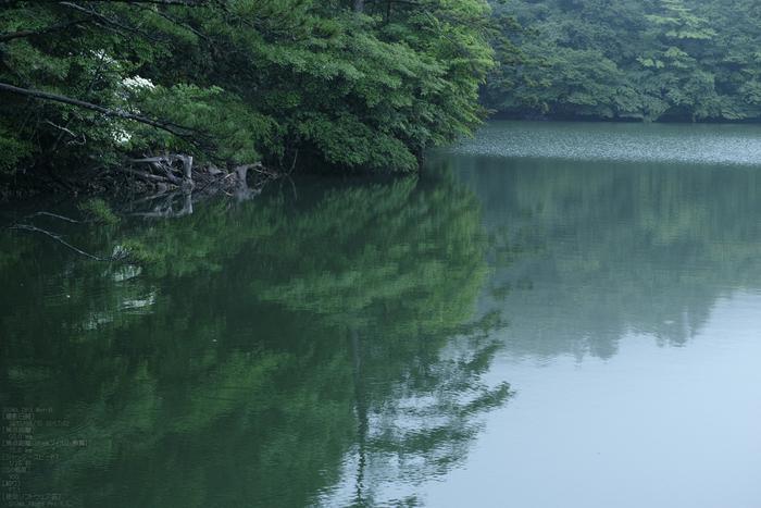 鳥取大山_大野池_2013yaotomi_13s.jpg