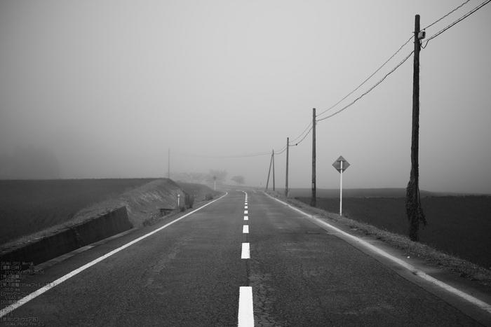 鳥取県道36号線明間_2013yaotomi_10s.jpg