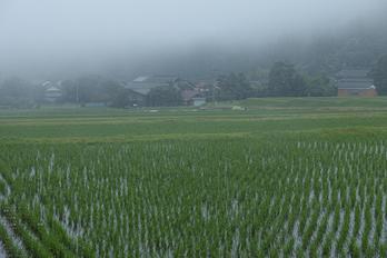 鳥取県道36号線明間_2013yaotomi_7s.jpg