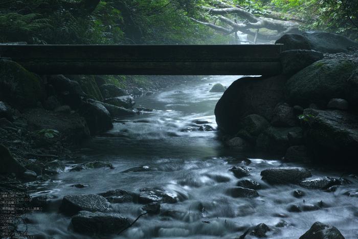 木谷沢渓流_2013yaotomi_11s.jpg