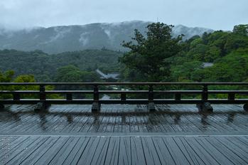 長谷寺の紫陽花_2013yaotomi_30s.jpg