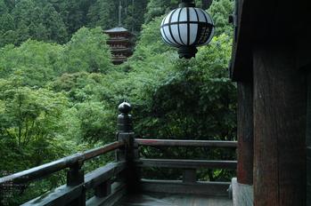 長谷寺の紫陽花_2013yaotomi_31s.jpg