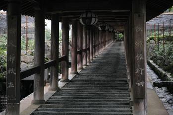 長谷寺の紫陽花_2013yaotomi_3s.jpg