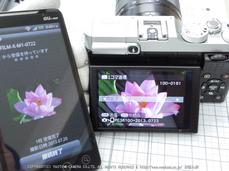 FUJIFILM,カメラアプリ_2013yaotomi_27.jpg