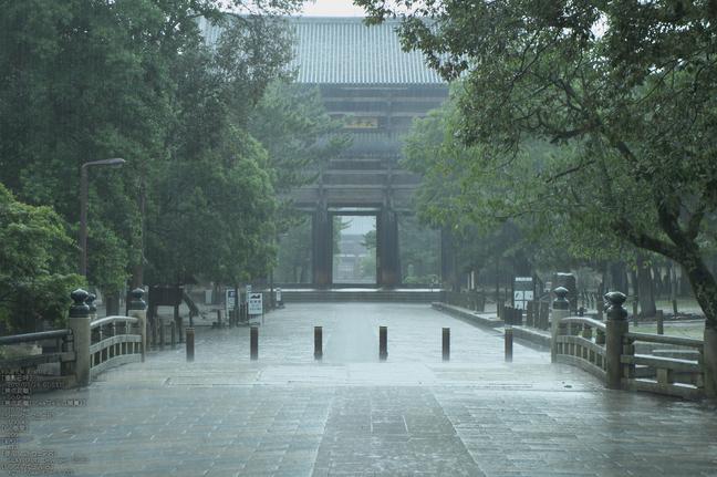 FUJIFILM,X-M1_2013yaotomi_東大寺_1s.jpg