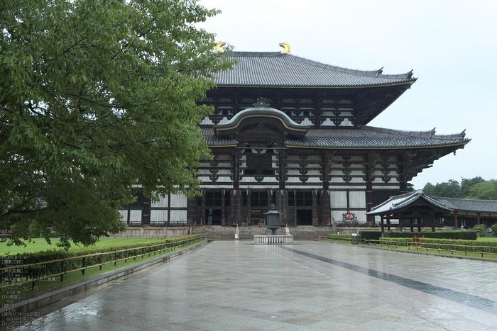 FUJIFILM,X-M1_2013yaotomi_東大寺_21s.jpg
