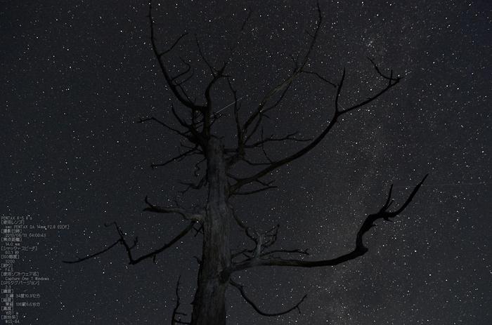 ペルセウス座流星群_大台ケ原_2013yaotomi_10s.jpg
