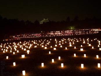 奈良・なら燈花会_2013yaotomi_11s.jpg