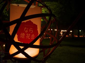 奈良・なら燈花会_2013yaotomi_20s.jpg