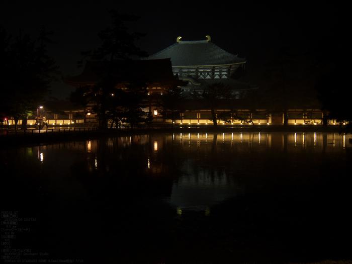 奈良・なら燈花会_2013yaotomi_7s.jpg