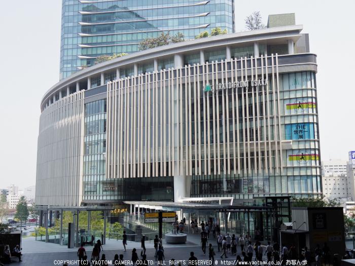 30000人の写真展,大阪_2013yaotomi_2s.jpg