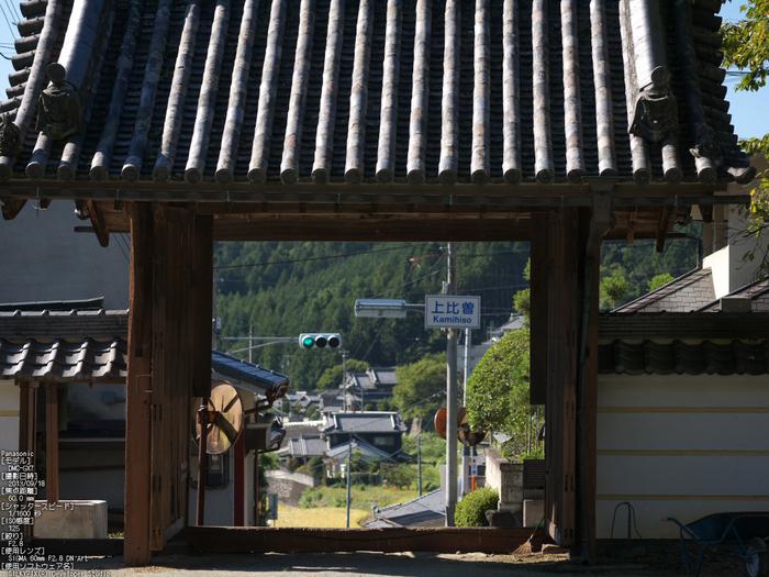 世尊寺,彼岸花_Panasonic,GX7_2013yaotomi_38s.jpg