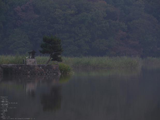 広沢池_Panasonic,GX7_2013yaotomi_3s.jpg