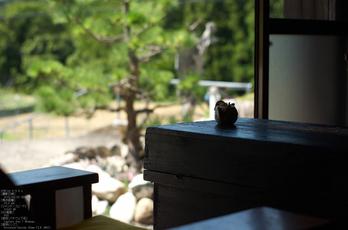 熊野市育生町・カフェ「ちやや」_2013yaotomi_10s.jpg