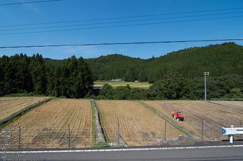 熊野市育生町・カフェ「ちやや」_2013yaotomi_3s.jpg