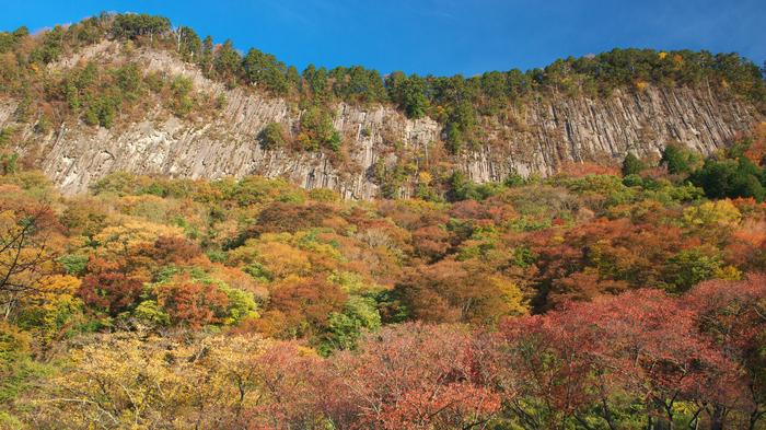 曽爾,屏風岩公苑,紅葉(PENTAX-K3)_2013yaotomi_25壁紙(1920x1080)_.jpg