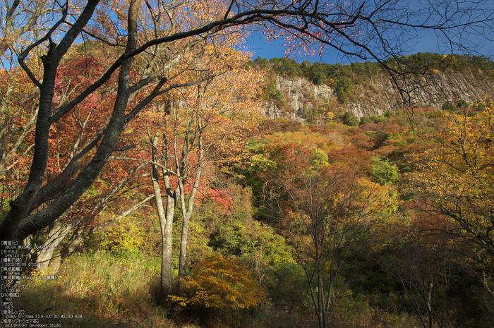 曽爾,屏風岩公苑,紅葉(PENTAX-K3)_2013yaotomi_27(17mm)s.jpg