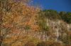 曽爾,屏風岩公苑,紅葉(PENTAX-K3)_2013yaotomi_27(70mm)full.jpg