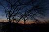 曽爾,屏風岩公苑,紅葉(PENTAX-K3)_2013yaotomi_2s.jpg