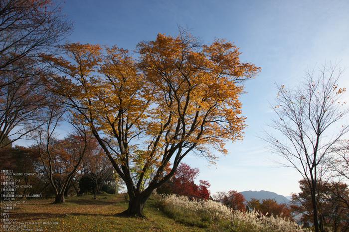 曽爾,屏風岩公苑,紅葉(PENTAX-K3)_2013yaotomi_36s.jpg