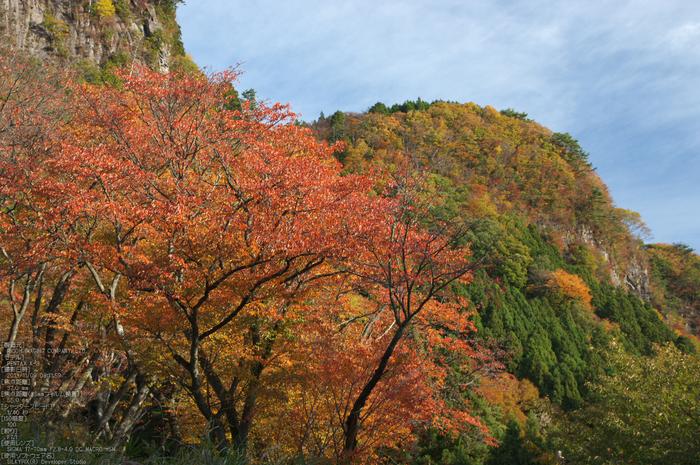 曽爾,屏風岩公苑,紅葉(PENTAX-K3)_2013yaotomi_51s.jpg