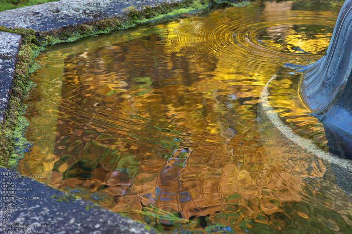 比叡山延暦寺(浄土院),紅葉(PENTAX-K3)_2013yaotomi_10s.jpg