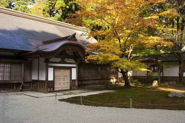 比叡山延暦寺(浄土院),紅葉(PENTAX-K3)_2013yaotomi_2s.jpg