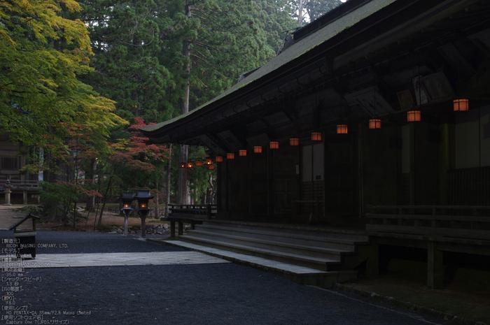 高野山,紅葉(PENTAX-K3)_2013yaotomi_11s.jpg