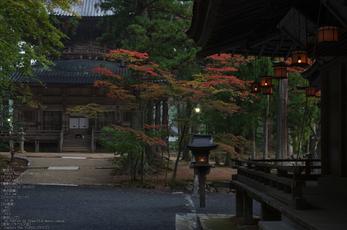 高野山,紅葉(PENTAX-K3)_2013yaotomi_12s.jpg