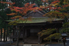 高野山,紅葉(PENTAX-K3)_2013yaotomi_15full.jpg