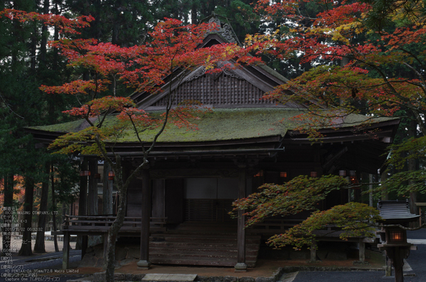 高野山,紅葉(PENTAX-K3)_2013yaotomi_15s.jpg
