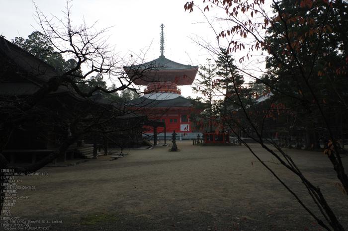 高野山,紅葉(PENTAX-K3)_2013yaotomi_16s.jpg