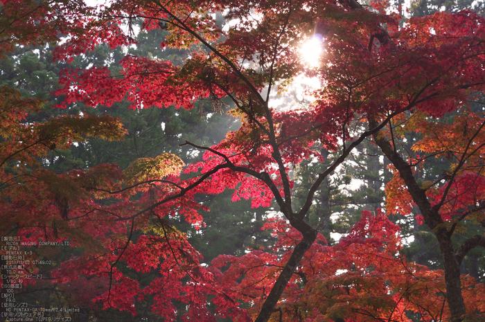 高野山,紅葉(PENTAX-K3)_2013yaotomi_26s.jpg
