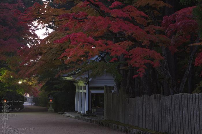 高野山,紅葉(PENTAX-K3)_2013yaotomi_5s.jpg
