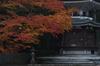 高野山,紅葉(PENTAX-K3)_2013yaotomi_6full.jpg