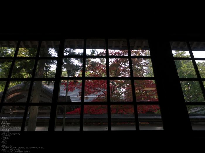 高野山,紅葉(Panasonic,GX7)_2013yaotomi_25s.jpg