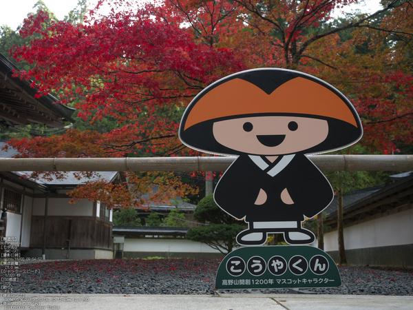高野山,紅葉(Panasonic,GX7)_2013yaotomi_26s.jpg