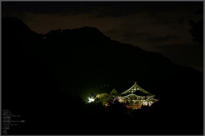 Nikon,Df_Ai,85mm_朝護孫子寺・紅葉_2013yaotomi_1st.jpg