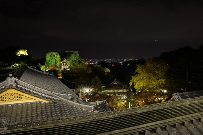 Nikon,Df_Ai_朝護孫子寺・紅葉_2013yaotomi_35s.jpg