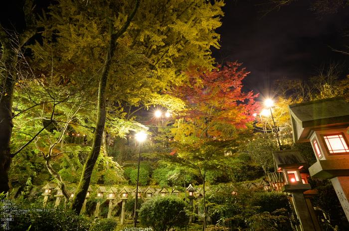 Nikon,Df_Ai_朝護孫子寺・紅葉_2013yaotomi_37s.jpg