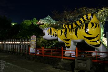 Nikon,Df_Ai_朝護孫子寺・紅葉_2013yaotomi_5s.jpg