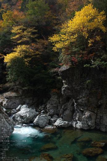 天川,天ノ川渓谷,紅葉(PENTAX-K3)_2013yaotomi_56s.jpg