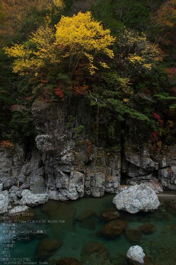 天川,天ノ川渓谷,紅葉(PENTAX-K3)_2013yaotomi_57s.jpg