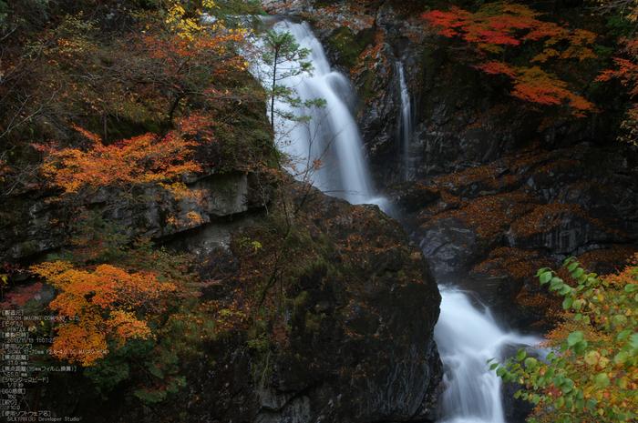 天川,天ノ川渓谷,紅葉(PENTAX-K3)_2013yaotomi_65s.jpg