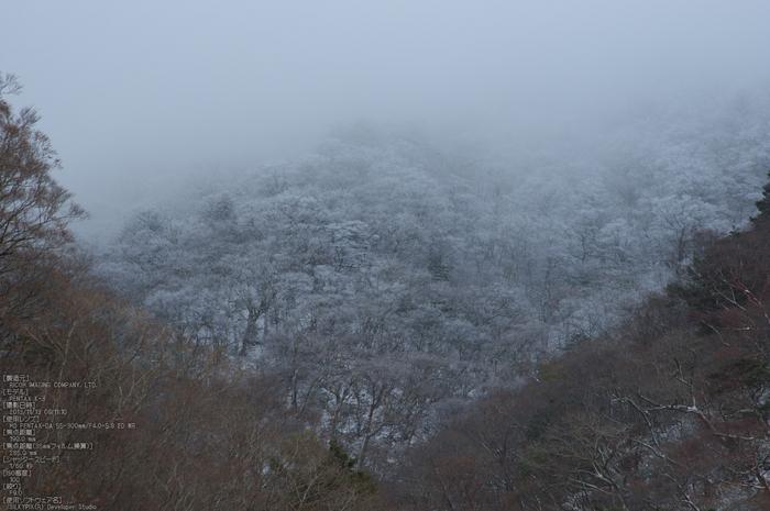 天川,行者還,紅葉(PENTAX-K3)_2013yaotomi_35st.jpg