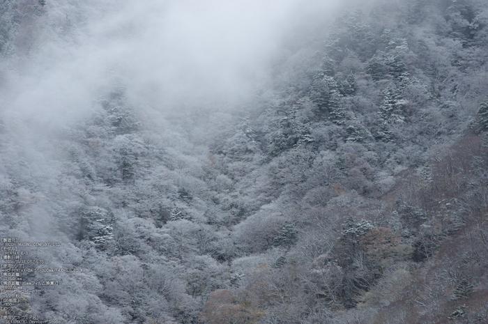 天川,行者還,紅葉(PENTAX-K3)_2013yaotomi_53s.jpg